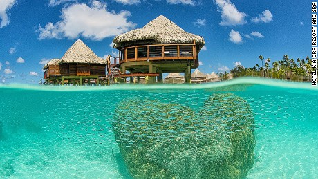 The world's best luxury dive resorts