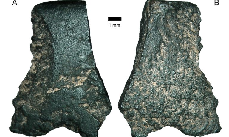 Oldest known axe discovered in Australia, claim researchers