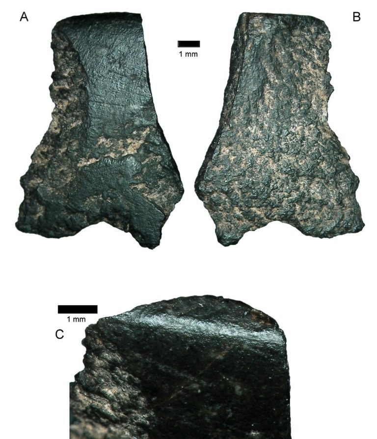 Archaeologists discover world's oldest axe | Fox News
